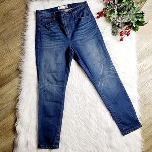 Garage Premium  Blue Skinny Jeans Plus Size